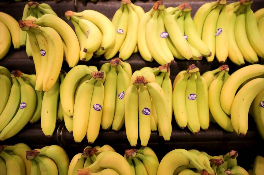 Überraschend, wo überall tierische Stoffe drin sind – auch in Bananen