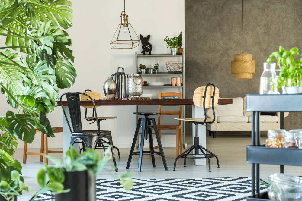 Wohnung mit Schreibtisch und vielen Pflanzen
