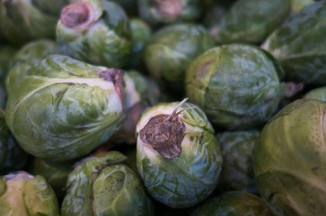 Gemüse Rosenkohl