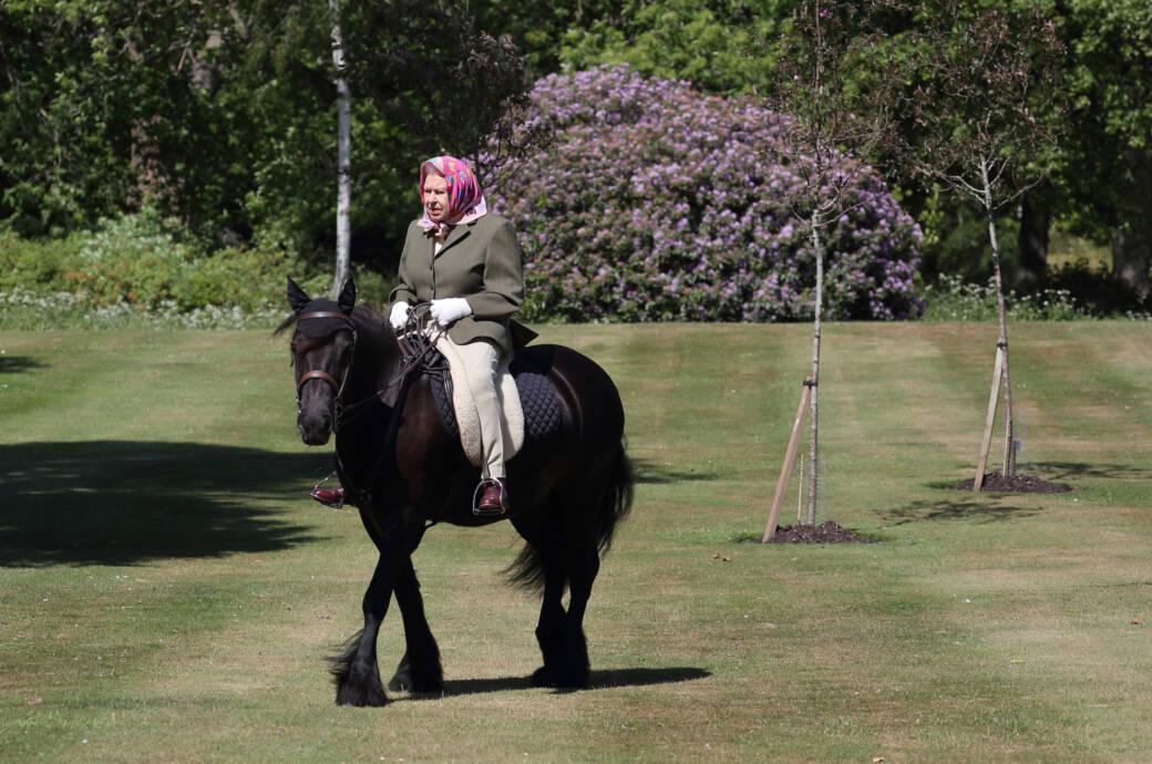 Nach Wochen der Abwesenheit – Palast veröffentlicht Foto der Queen zu Pferde!