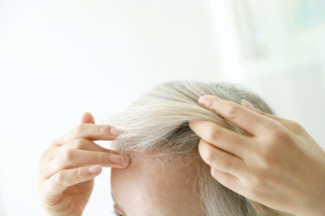 Wachsen Haare Schneller Wenn Man Sie Schneidet